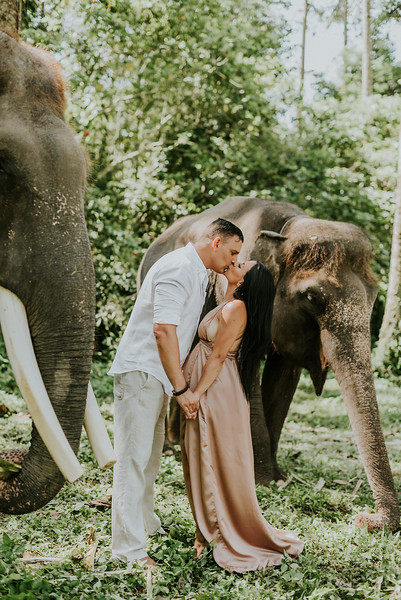 VTV_family_photoshoot_elephants_Bali_ (108).jpg