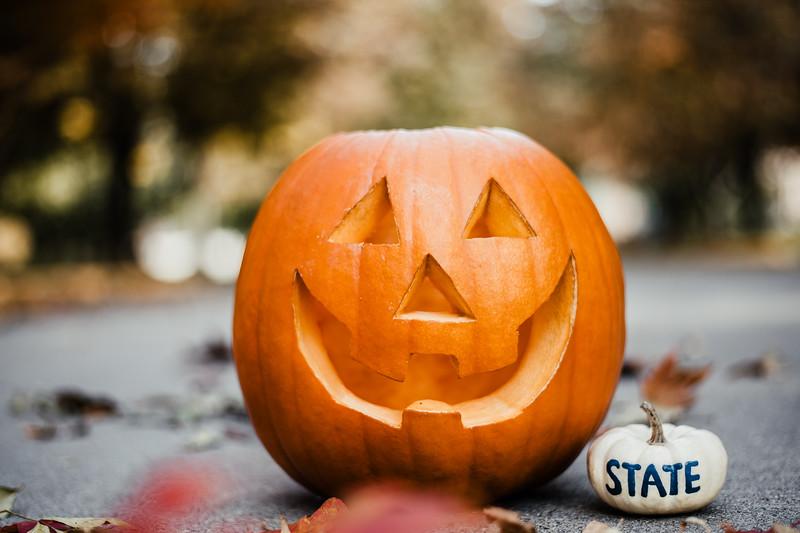 October 25, 2018 Halloween DSC_5740.jpg