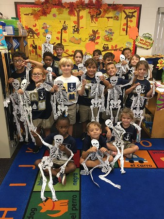 Skeletons! We are learning about the parts of our body!