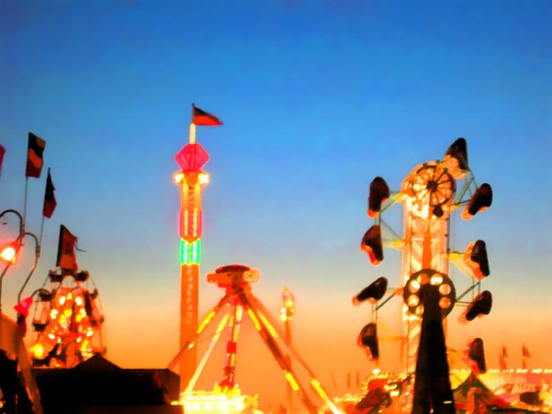 Fair2009.jpg