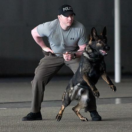 East Hampton Police - K9