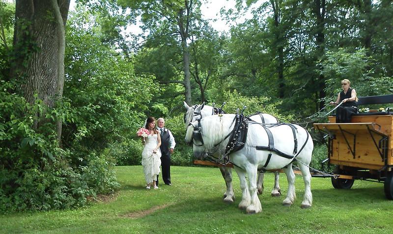 bride_wagon_horses.jpg