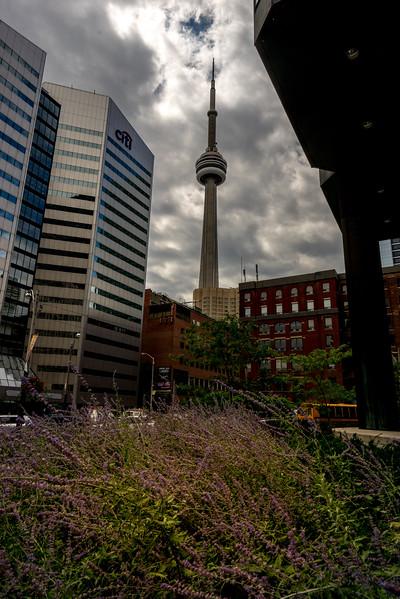 Toronto August 2017