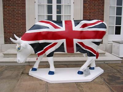 Cultural Cows