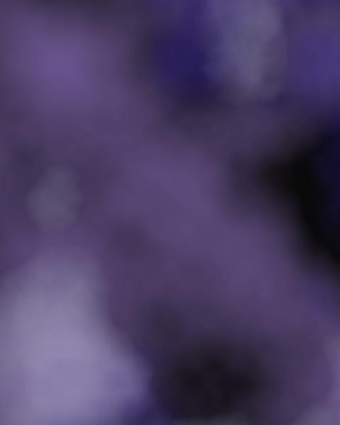 Purple Nights.jpg