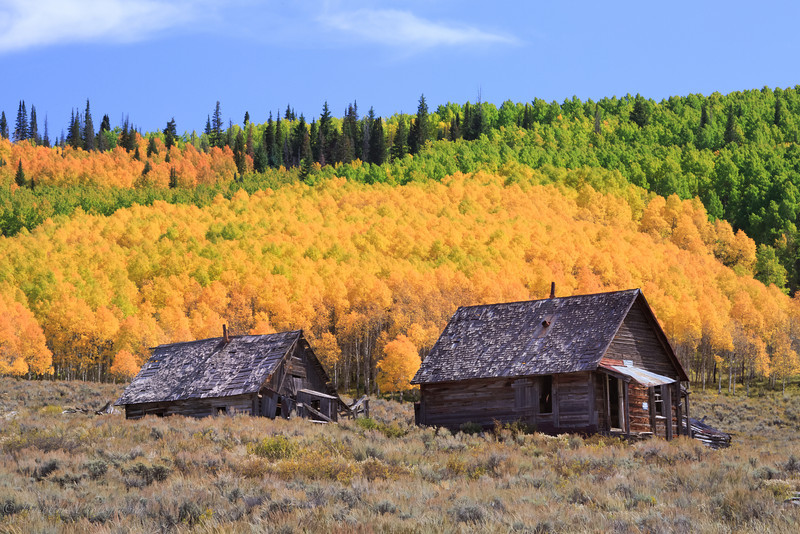 Colorado Color-26.jpg