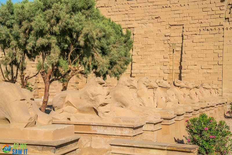 Karnak-03102.jpg