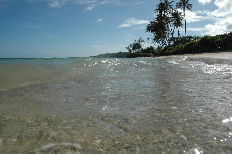 Hawaii - Kahala Beach-77.JPG