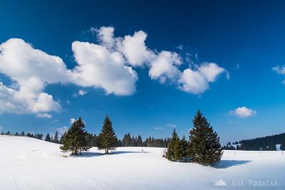 Sunny day on Rogla ski slopes - Mar 19, 2015
