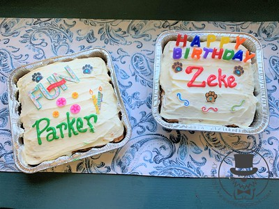 Parker and Zeke's birthday's 2020!!