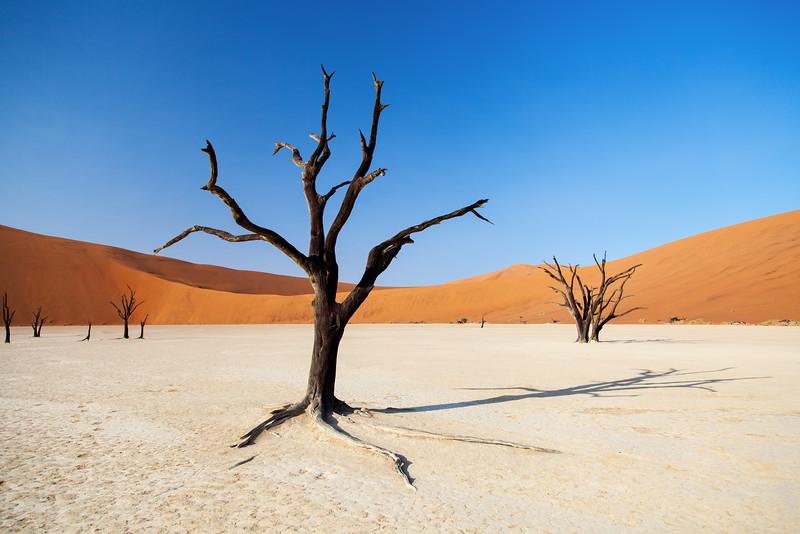 Namibia-34.jpg