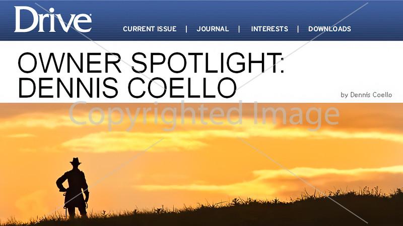 Owner Spotlight