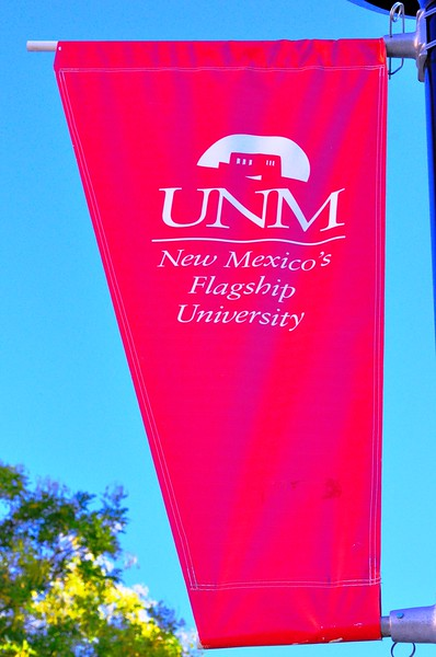 Mentoring Institute at The University of New Mexico (Albuquerque, New Mexico)