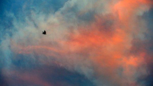 Sunset, Santa Rosa CA, Nov. 4, 2007