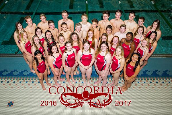 Swim Team Poster