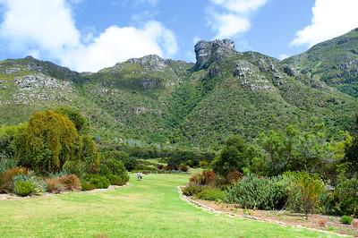 Botanic Gardens - Kirstenbosch in Cape Town, S.A.