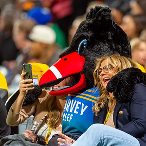 Super Rugby Western Force vs Chiefs 15.05.2021