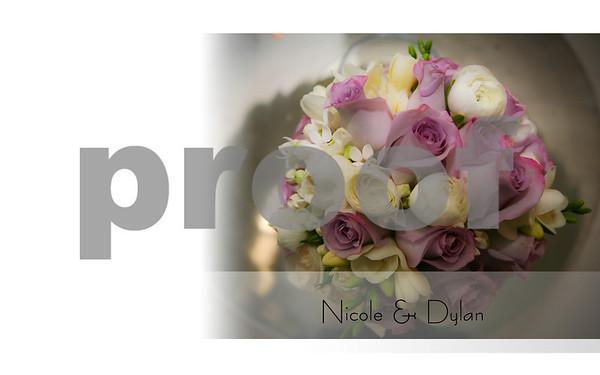 Album Dylan Nicole