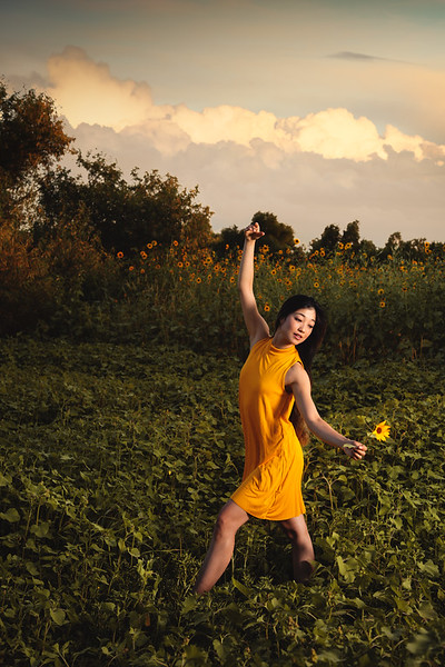 Ballerina-Dancing-in-Sunflowers-by-Denver-Portrait-Photographer-Jason-Sinn.JPG