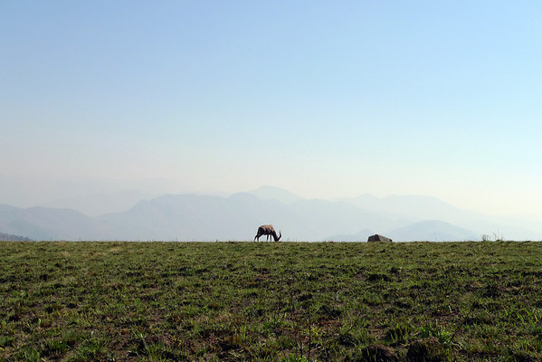 2011 AUG 30 Swaziland
