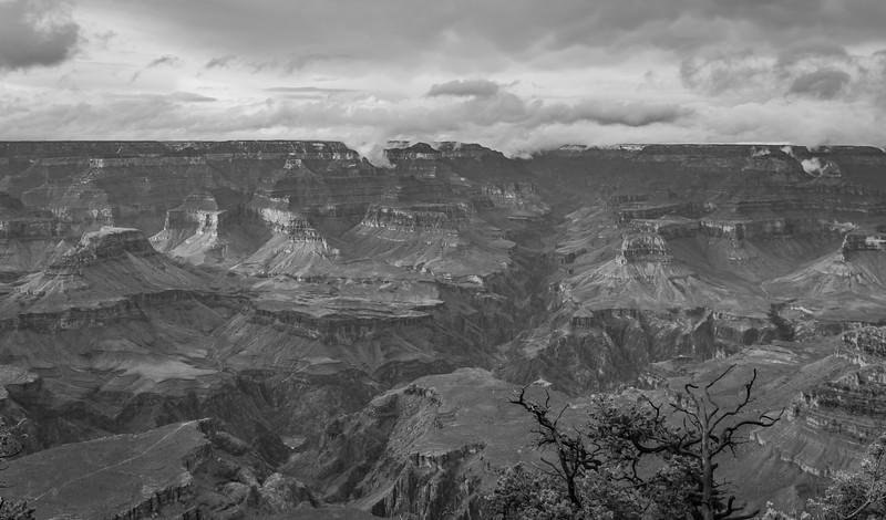 Grand Canyon-6095.jpg