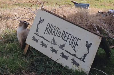 2011 12-25 Rikkie's Refuge