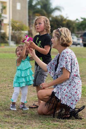 Kite Flying in the Park