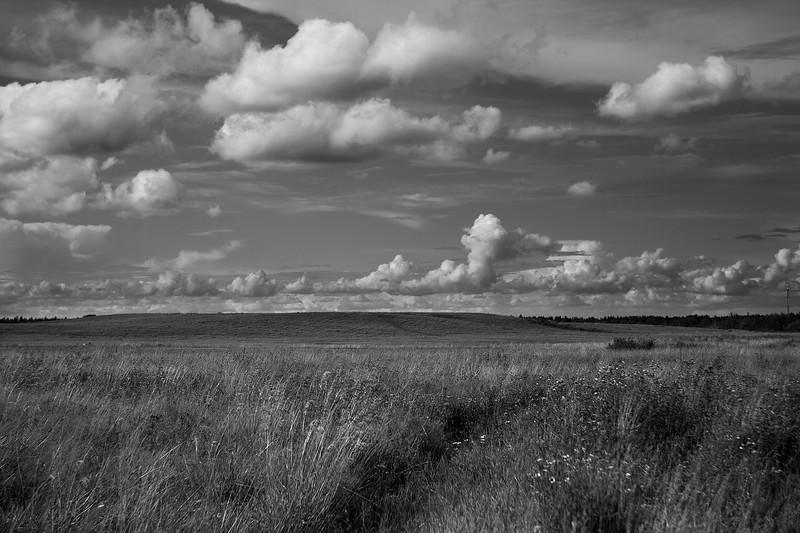 Saint Petersburg Countryside, 2014.