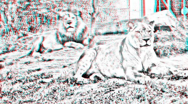 Anaglyph_pencil_drawings