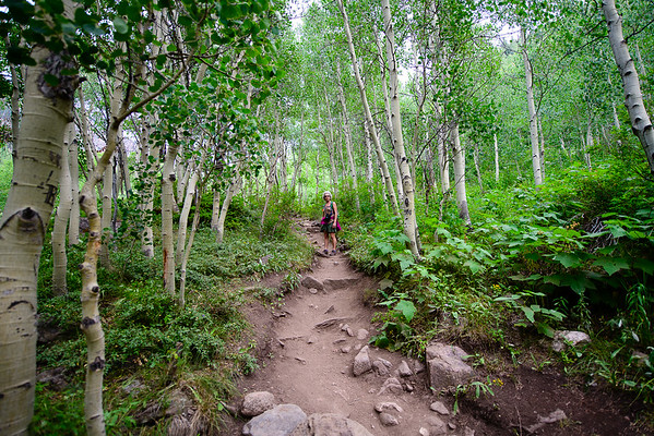 Colorado Hikes and Wildflowers 2018