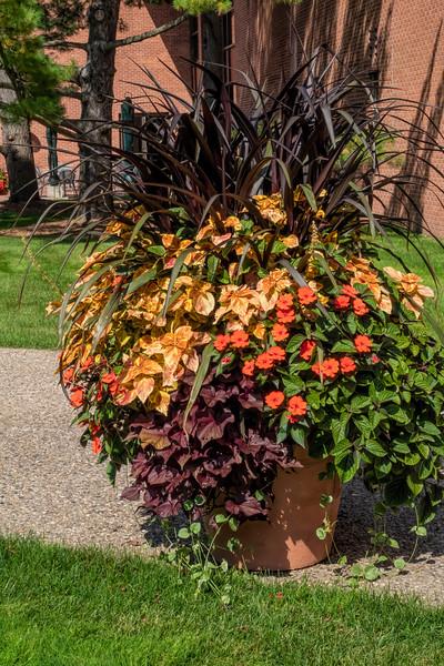 Planter in fall color scheme