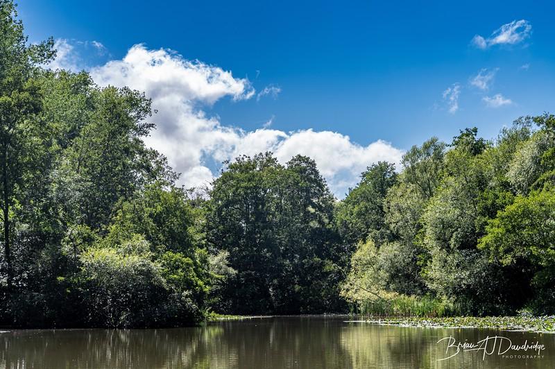East Chiltington-9223.jpg