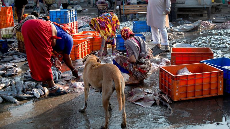 faceless fish market.jpg