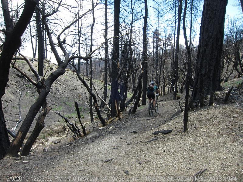 20100509084-Trail Recon, Vetter Mountain Trail.JPG