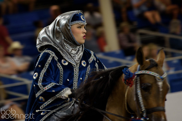 Scottsdale Arabian Horse Show - February 2016