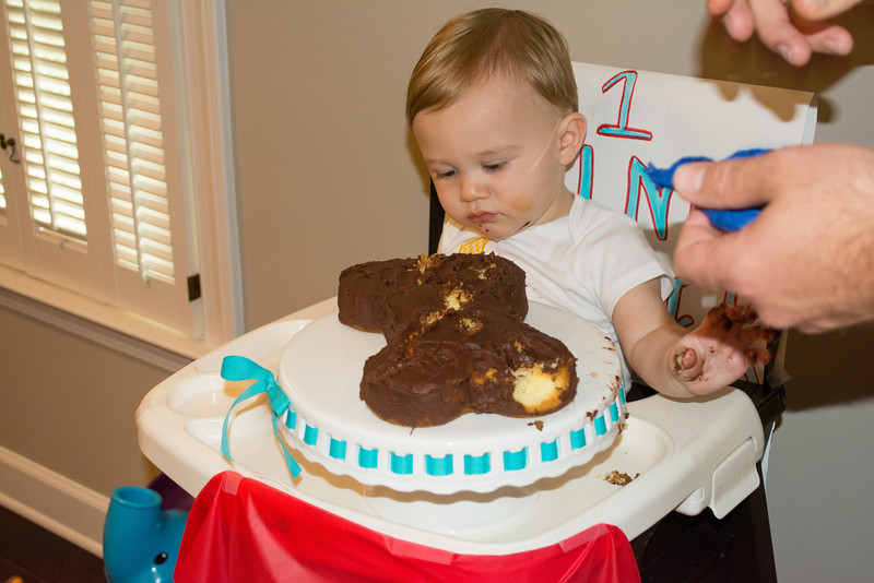 Kyler's First Birthday (100 of 304).jpg