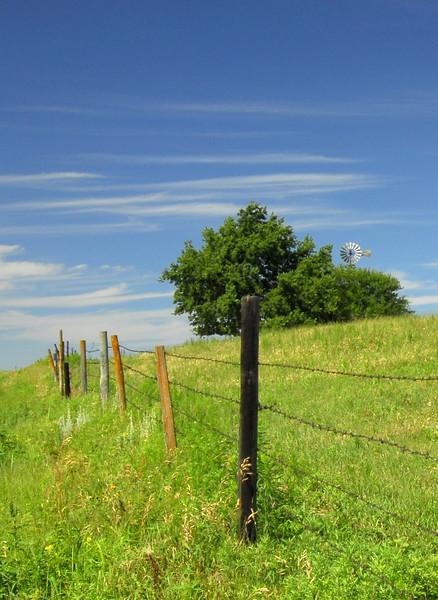 Fence Line & Windmill