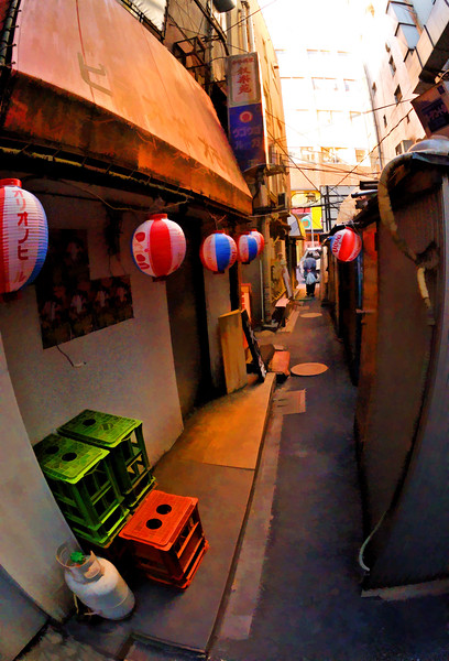 Shinjuku Back Streets