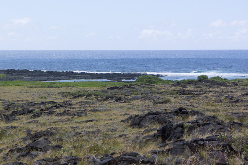 At Ka'aha, the trail runs out a few hundred feet from the sea.  Close enough.