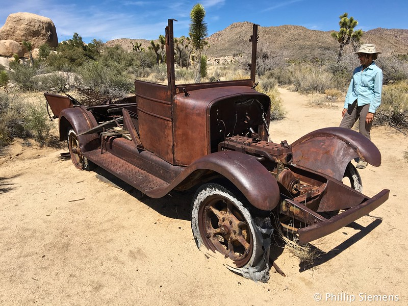 Old truck in Joshua Tree NP