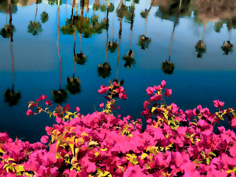 mar28_flowers.jpg