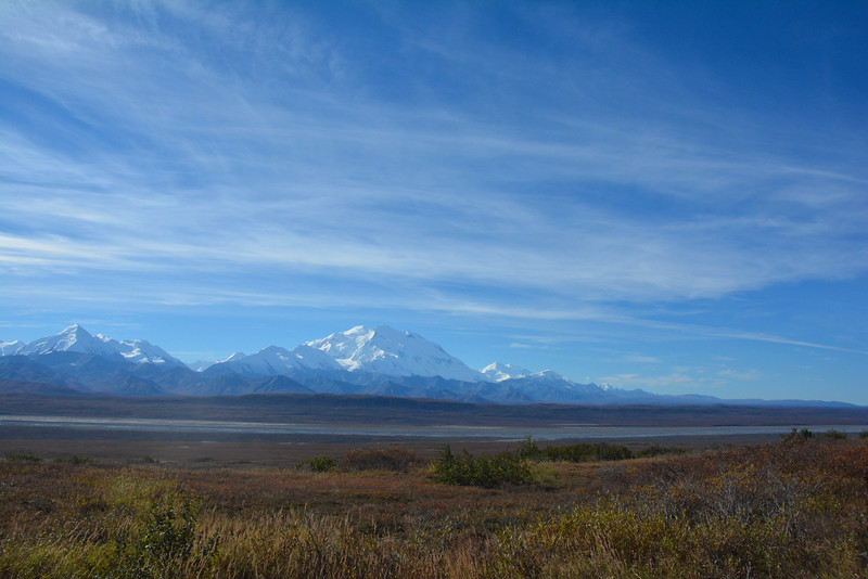Denali-National-Park-116.jpg