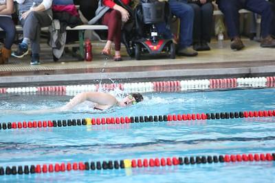 Twin City Invitational Swim Meet