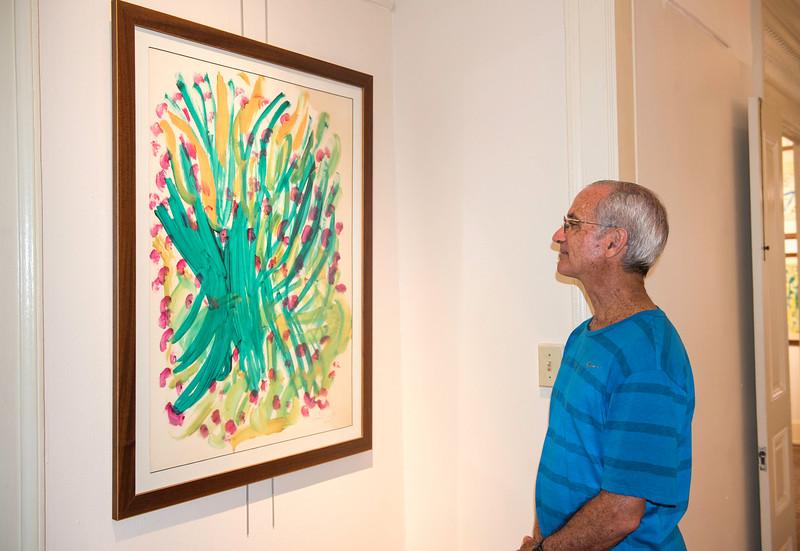 20160729_Jharna Kala Exhibit in PR_032.jpg