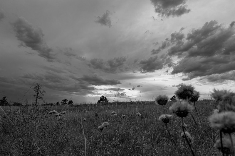 Hysham, MT Clouds (B-W)