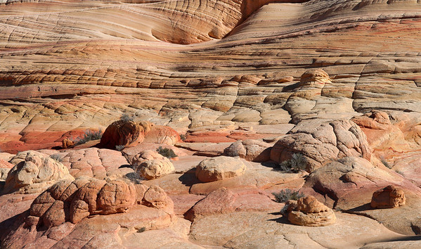 The Coyote Buttes