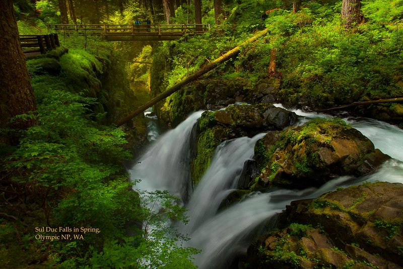 Sul Duc Falls in Springjpg045.jpg