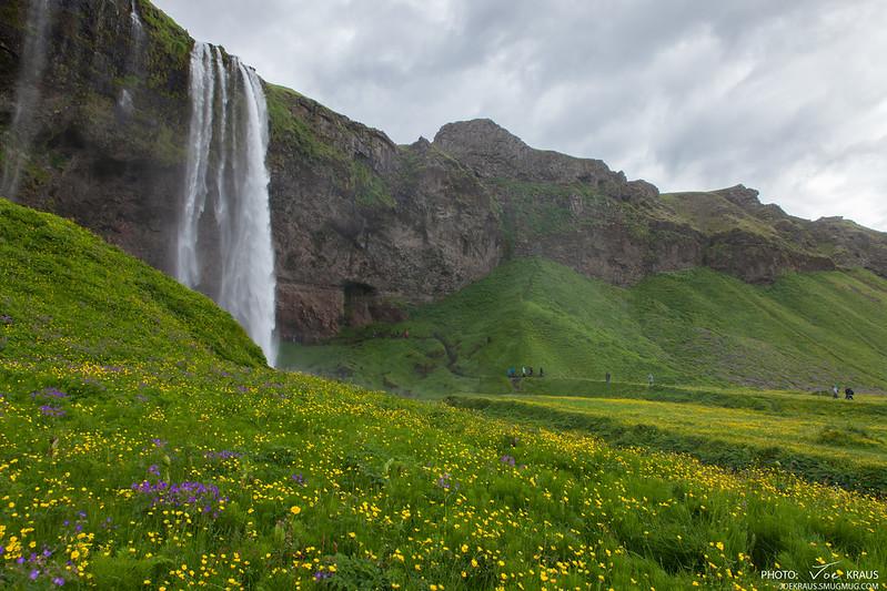Field of Waterfall