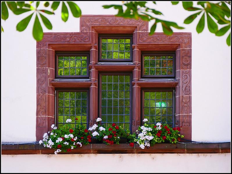 2018-08-Freiburg-503.jpg