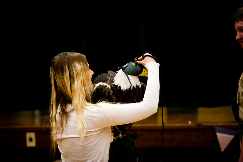 martin eagle-43.jpg
